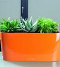 Plastic Self Watering Pots