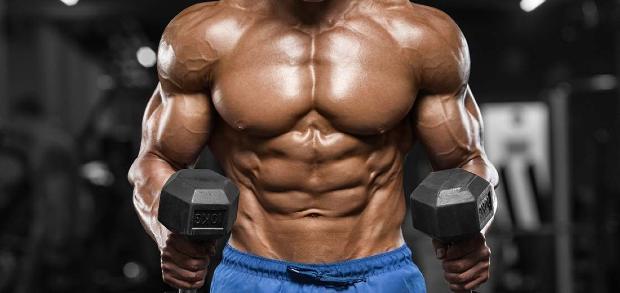mass gainer protein